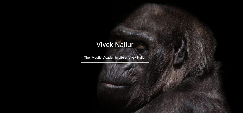 Vivek Nallur
